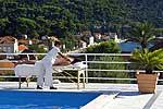Hotel Villa Vilina  - Lopud /Insel Lopud Kroatien (Dalmatien) Spartipp: